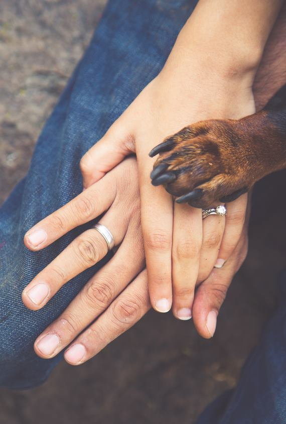 pets_bride-essentials_5